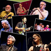Robert Hunter David Bromberg Woody Allen Ricky Skaggs Jake Shimabukuro Peter Rowan  Marty Stewart  Lisa Lobe