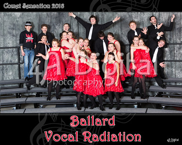 vocal radiation group 2