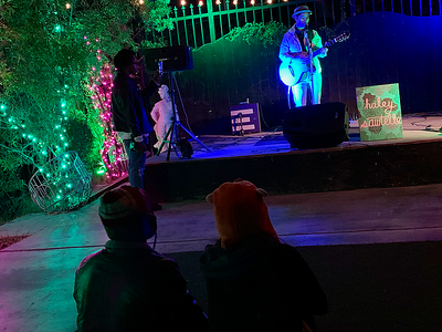 2018-11-10 Haley Sawtelle EP Release Show at Velveteen Rabbit-010-Meg Defante