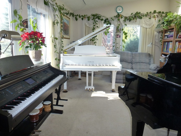 Lana's music studio is located in Colorado Springs, CO, near Chapel Hills Mall. <br /> <br /> <br /> You can have piano lessons anywhere in the World, using  Internet and Skype!