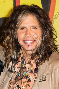 WEST HOLLYWOOD, CA - SEPTEMBER 18:  Vocalist Steven Tyler of Aerosmith poses at House of Blues Sunset Strip on September 18, 2012 in West Hollywood, California.  (Photo by Chelsea Lauren/WireImage)