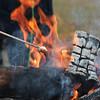 Roasting marshmallows at the Mountain Bike Festival