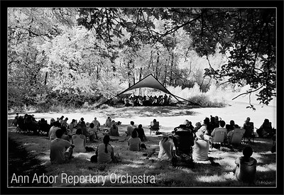 Beethoven in the Arb  The AARO plays Beethoven Symphony No. 6 in the woods, under blue skies, while the audience sits in the shade at the top of the hill  Ann Arbor Repertory Orchestra Robert Boardman, conductor  Nichols Arboretum Amphitheater University of Michigan, Ann Arbor  28-JUN-2009