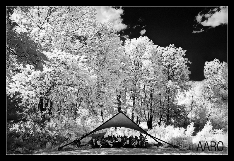 Backdrop: Trees & Clouds  The AARO stages a summer performance of Beethoven Symphony No. 6 in an ampitheater in the woods  Ann Arbor Repertory Orchestra Robert Boardman, conductor  Nichols Arboretum Amphitheater University of Michigan, Ann Arbor  28-JUN-2009