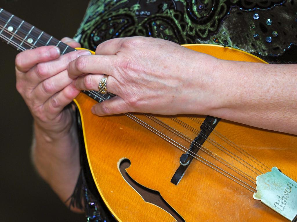 Bluegrass Hands-02