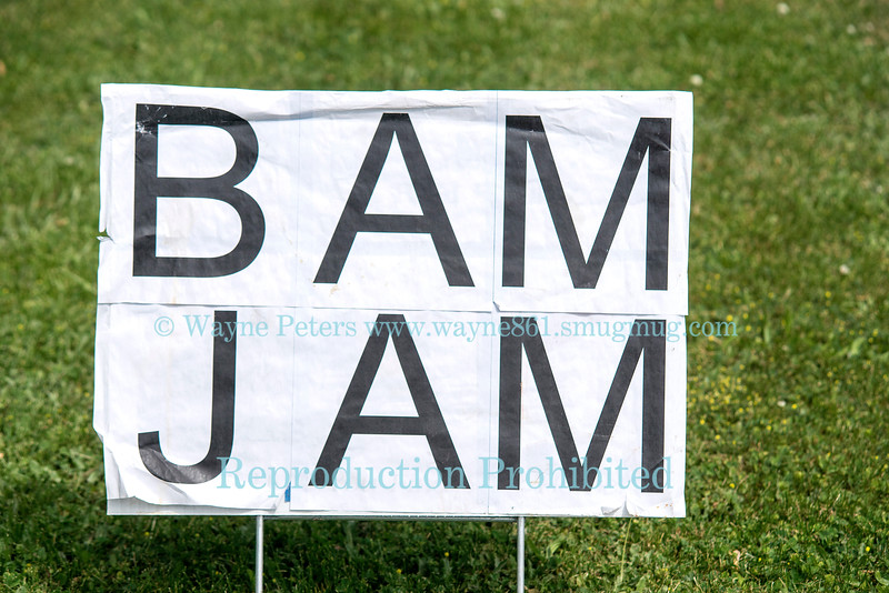 BamJam 2016 at Stately Ashby Manor, May 29, 2016.