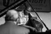 Bassist Herm Burney looks at pianist Bob Butta as the two share a musical phrase.