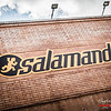 Sala Salamandra - L'Hospitalet de Llobregat - Barcelona  - Spanje/España