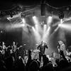 Black Crowes Bowery Ballroom (Mon 11 11 19)_November 11, 20190679-Edit
