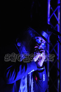 BluesPZeds_12OctDSC_1170Vert