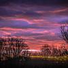 1-1-20: Bobville sunrise
