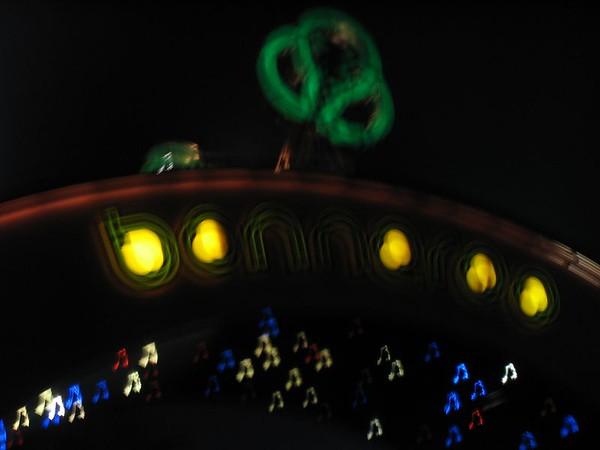 Bonnaroo 2004