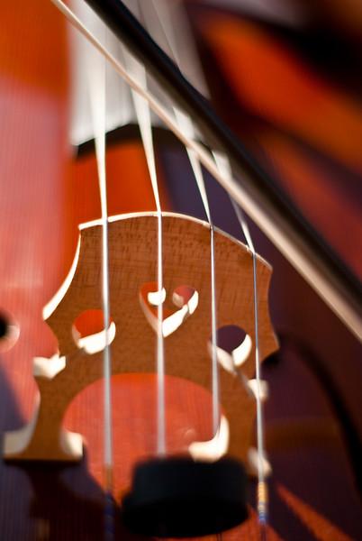 Brandon & Cello-20