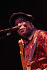 12-31-2011, New Years Eve with Buddy Guy and Gregg Allman