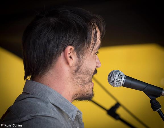 D Burmester & The Blind at the Newtown Festival Street Fair, Wellington, 8 March 2015