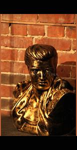Elvis the mascot ...