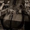 Ferdinand the Cello