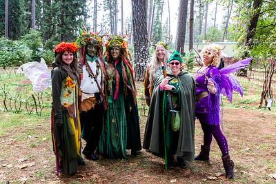 Performances and Festival Fun