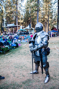 A Shining Knight - Celtic Festival 2016-5