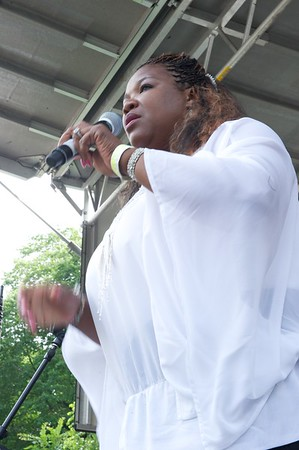 The Chicago Blues Festival 2010