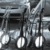 Banjos for sale.