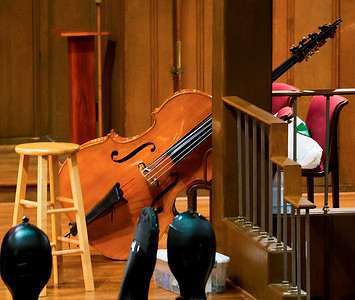 A Double Bass in repose -- resting up for its big moment