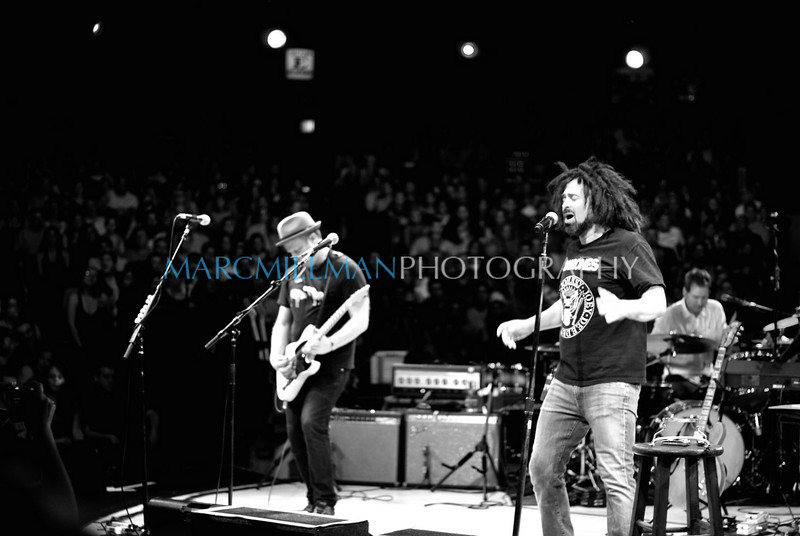 Hanging Tree<br /> <br /> Counting Crows (Theatre @ Westbury- Wed 8/4/10) B&W