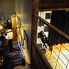 """Musicians warm up backstage before performing Saturday afternoon.<br /> Bertolin Barn, north of Longmont, is one of the only venues to see country music in Boulder County.<br /> For a video of the music and more photos, go to  <a href=""""http://www.dailycamera.com"""">http://www.dailycamera.com</a><br /> Cliff Grassmick/ April 30, 2011"""