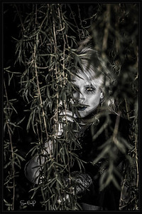 Courtney Lane Spaulding-181sc