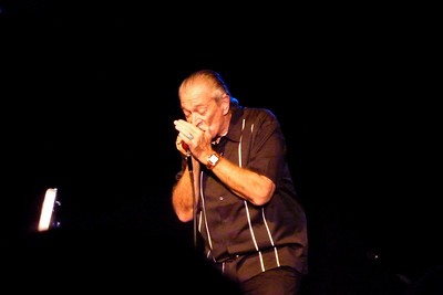 Note:  this isn't her. :)  It's blues legend Charlie Musselwhite, who opened for Cyndi AND played in her set!