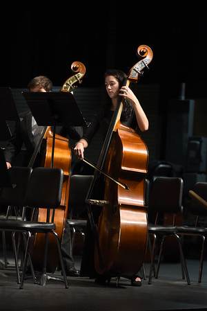 DHS Fall String Concert 2017