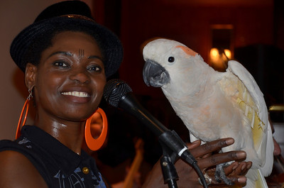 Fely Tchaco and parrot at opening night party for Freddy Clarke's Wobbly World and his mother Pearl's birthday, at Maestro's Restaurant (formerly STARS). PERFORMERS: - Fely Tchaco, Ivory Coast 	French and Guoro Vocals  - Georges Lammam, Lebanon 	Arabic Vocals / Violin  - Erick Barberia, Cuba 	Bata / Yoruba and Spanish Vocals - Candido, Nigeria 	Percussion / Yoruba Vocals   - Mingyuan Yuan, China 	Mandarin Vocals / Erhu   - Vassil Bebelekov, Bulgaria 	Gaida   - Scott Thompson, US 	Bass   - David Tucker, US 	Drums   - Freddy Clarke, Menlo Park 	Guitar / Vocals