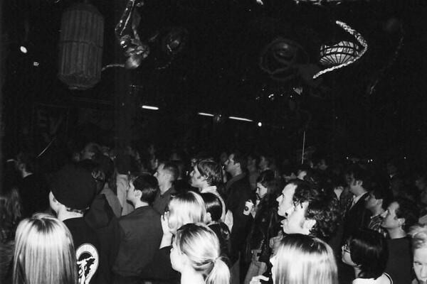09-Croc Crowd