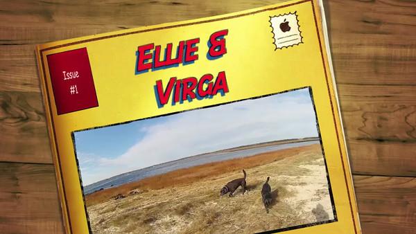 Ellie & Virga at Salisbury 10-26-13