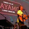 Ellis performing at Cayamo.