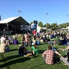 Royal Athletic Park offers up a perfect setting for the first ever Folk West.