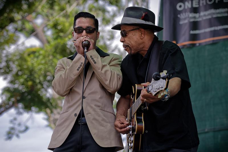 Metro Fountain Blues Festival 2015