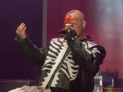 Five Finger Death Punch 008