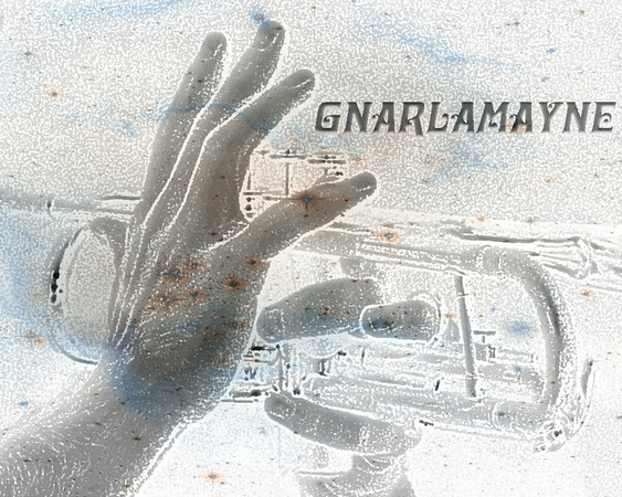 Gnarlamayne -A cool band in New Hampshire