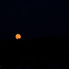 Full Moon over the Heron