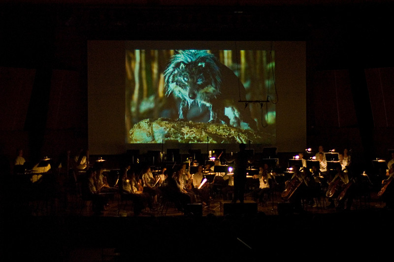 "The CMF Festival Orchestra, conducted by Michael Christie, perform ""Peter and the Wolf"" accompanied by the 2008 Oscar-winning animated short film Suite from the Love for Three Oranges."