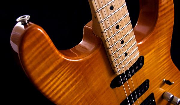 Warren Guitar