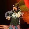 Guns N' Roses