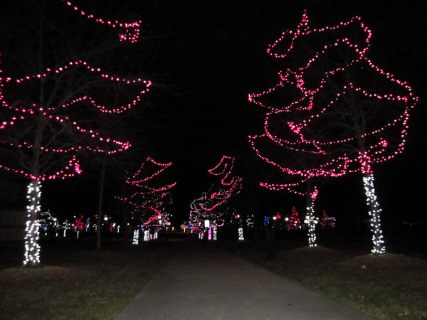Roosevelt Park, 700 Longs Peak Ave., Longmont (Magdalena Wegrzyn/Times-Call)