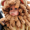 "Clementine Villarreal, 14-months, prepares to show off her lion costume at the Kappa Kappa Gamma house on Sunday.<br /> The Kappa Kappa Gamma Society at the University of Colorado held the 7th annual Halloween House to benefit BoulderReads.<br /> For more photos at Kappa Kappa Gamma, go to  <a href=""http://www.dailycamera.com"">http://www.dailycamera.com</a>.<br /> Cliff Grassmick / October 28, 2012"