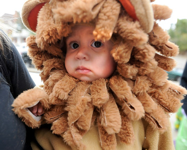 Clementine Villarreal, 14-months, prepares to show off her lion costume at the Kappa Kappa Gamma house on Sunday. The Kappa Kappa Gamma Society at the University of Colorado held the 7th annual Halloween House to benefit BoulderReads. For more photos at Kappa Kappa Gamma, go to www.dailycamera.com. Cliff Grassmick / October 28, 2012