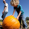 "Erik Paulsrud, left, watches Ulysses Paulsrud pick out the family pumpkin at Munson Farms.<br /> For more photos of Munson Farms, go to  <a href=""http://www.dailycamera.com"">http://www.dailycamera.com</a><br /> Cliff Grassmick / September 29, 2012"