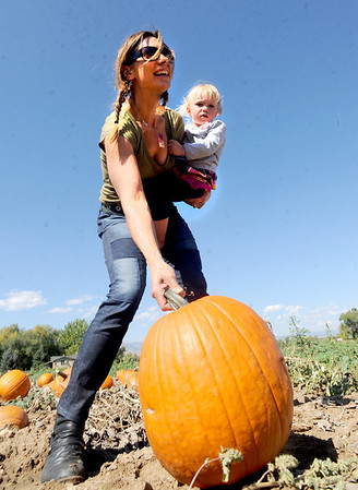 "Amy Hayes brings her daughter, Lillian, out to the Munson Farms pumpkin patch to pick out a pumpkin.<br /> For more photos of Munson Farms, go to  <a href=""http://www.dailycamera.com"">http://www.dailycamera.com</a><br /> Cliff Grassmick / September 29, 2012"