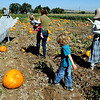 "Amy Hayes brings her daughter, Lillian, out to the Munson Farms pumpkin patch with Ulysses Paulsrud.<br /> For more photos of Munson Farms, go to  <a href=""http://www.dailycamera.com"">http://www.dailycamera.com</a><br /> Cliff Grassmick / September 29, 2012"