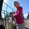 """Ava Varga, 5, of Broomfield, pets a goat at the Rock Creek Pumpkin Farm, outside Broomfield.<br /> For more photos of pumpkin patches, go to  <a href=""""http://www.dailycamera.com"""">http://www.dailycamera.com</a><br /> Cliff Grassmick / October 2, 2011"""